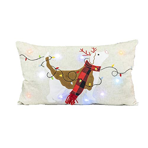 Funny Light Up Christmas Dog Pillow - Indoor Holiday Decoration (Up Light Christmas Decoration Dog)