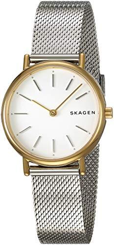 Skagen Ladies Mesh (Skagen Women's Signatur Analog-Quartz Stainless-Steel Strap, Silver, 14 Casual Watch (Model: SKW2729))