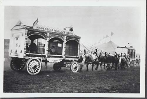 Hagenbeck Wallace Circus horse-drawn animal cages photo 1920s