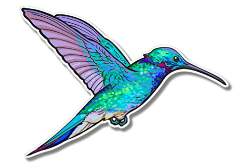 Hummingbird Colorful Vinyl Sticker - Car Window Bumper Laptop - SELECT - Nectar Surfboards