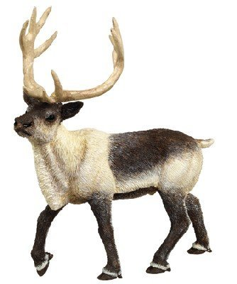 Safari Ltd Wild North American Wildlife Reindeer