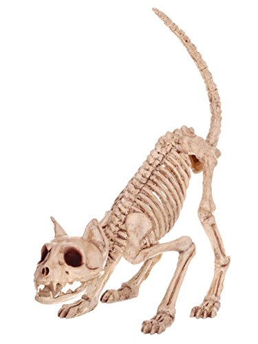 (Crazy Bonez Skeleton Cat - Lil' Kitty)