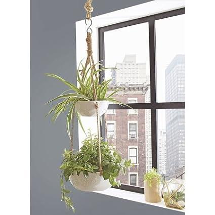 Amazon.com: Mejor casas y jardines maceta de doble para ...