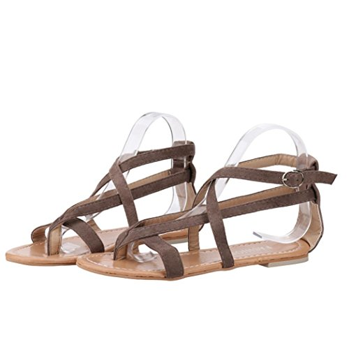 Strap Rom Flat Schuhe Cross Damen Wedge Strand Sandalen Damenmode Sandalen Braun Muium nqtzwHYTxz