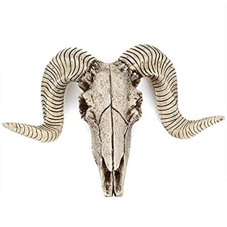 WSCOLL Resina Toro Vaca Cráneo Cabeza Colgante de Pared ...