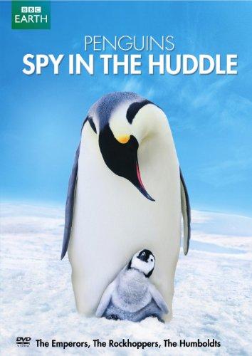 Alaska Penguins - Penguins: Spy in the Huddle