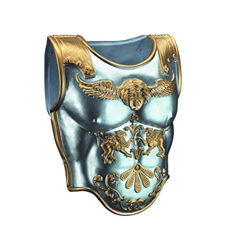 Disguise Men's Roman Armor Costume Accessory, Silver/Gold, -