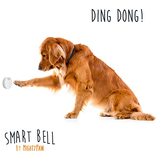 Prevent accidents with a dog communication bell