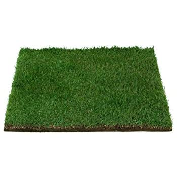 Amazon Com Fresh Patch Real Grass Training Sod As Seen