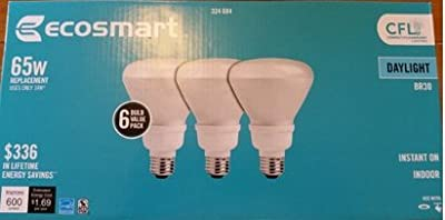Ecosmart 65W Equivalent Daylight 5000K BR30 CFL Light Bulb (6-Pack)