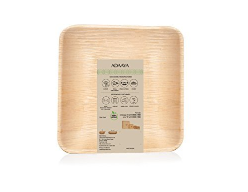 Disposable Plates made of Palm Leaf: Heavy Duty & Eco - Better than wood & Bamboo- Square Shape (10'' Square Plate - 25 pcs, Peach to tan)