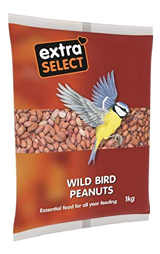 Extra Select Peanuts Wild Bird Food, 1 kg