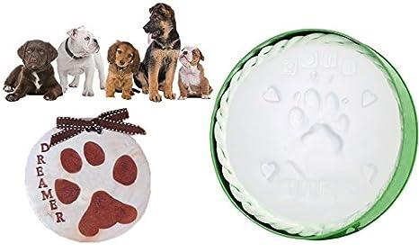 Kit de calco de yeso para crear huellas de perros y gatos como recuerdo. MWS: Amazon.es: Hogar