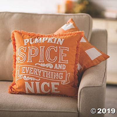 Fun Express Pumpkin Spice and Everything Nice Farmhouse Pillows 2 Piece Set Gingham Pattern