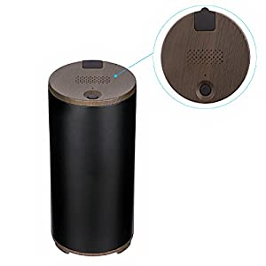 LUOYIMAN Air Purifier Portable Ozone air cleaner Sterilizer Deodorizer USB Charge for Car Home Office (Black)