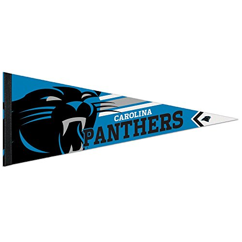 Wincraft NFL 14498115 Carolina Panthers Premium Pennant, 12