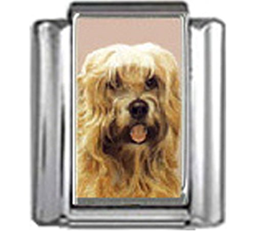 Stylysh Charms Wheaten Terrier Dog Photo Italian 9mm Link DG398