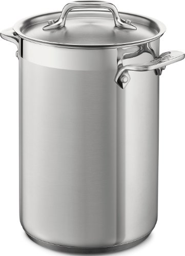 Asparagus Tall (All-Clad 59905 Stainless Steel Dishwasher Safe Asparagus Pot with Steamer Basket Cookware, 3.75-Quart, Silver)