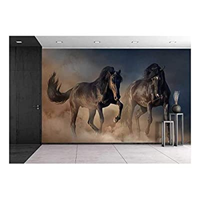 Two Black Stallion Run in Desert Dust Against Sunset Sky, Classic Design, Elegant Technique
