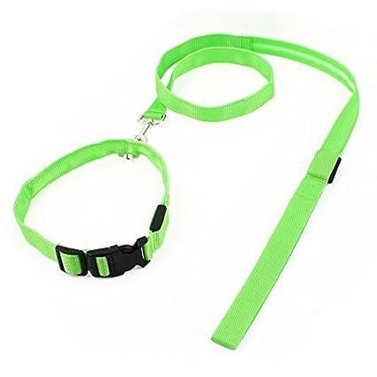 eDealMax LED Luz de Nylon Hebilla de liberación Para mascotas Collar Ajustable del correo del Plomo