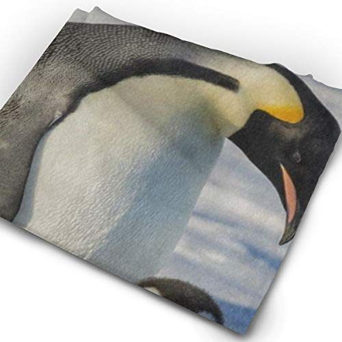 Magic Headwear Penguin Painting Outdoor Scarf Headbands Bandana Mask Neck Gaiter Head Wrap Mask Sweatband