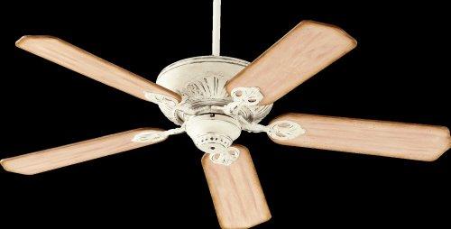 5bl Fan - 6