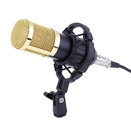 HATCHMATIC BM-800 Micrófono de Condensador para grabación de ...