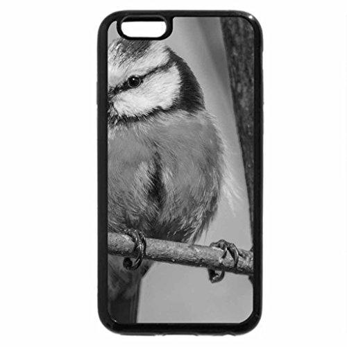 iPhone 6S Case, iPhone 6 Case (Black & White) - Little Yellow Birdie