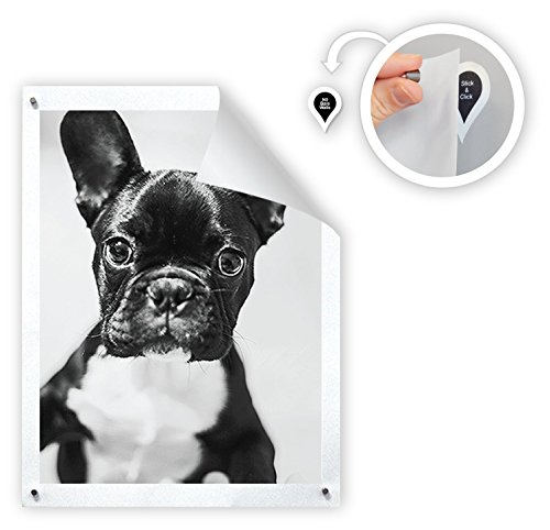 GoodHangups - Damage-Free Magnetic Poster & Picture Hangers (As Seen On Shark Tank) (40 - Dot Glasses Pin