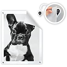 GoodHangups - Damage-Free Magnetic Poster & Picture Hangers ( 8 Pack )