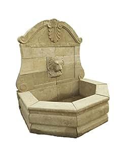 Pared Brunnen con cabeza de león de piedra natural