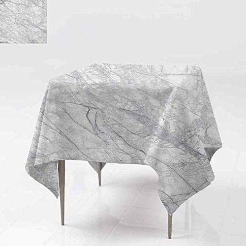 AndyTours Indoor/Outdoor Square Tablecloth,Marble,Granite Surface with Bunch of Fracture Lines and Branches Veins Artful Design,High-end Durable Creative Home,54x54 Inch Pale Grey White