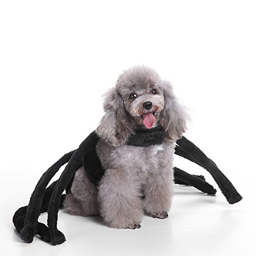 MaruPet Halloween Costume Company Pet Spider Harness Costume for Teddy, Pug, Chihuahua, Shih Tzu, Yorkshire Terriers, Papillon Black A-Black]()