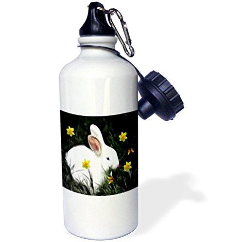 nny Daffodils Sports Water Bottle, 21 oz, White (Bunny Daffodil)