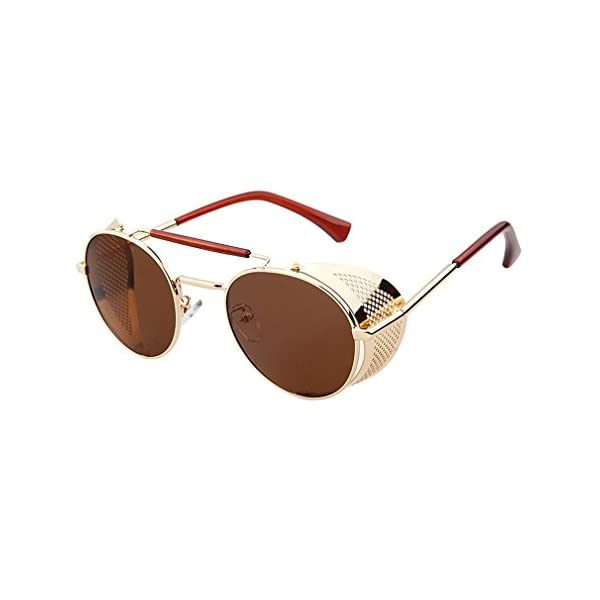 Sunglasses Side Shield Steampunk Vintage Cool UV Protection Round Glasses For Women&Men 4