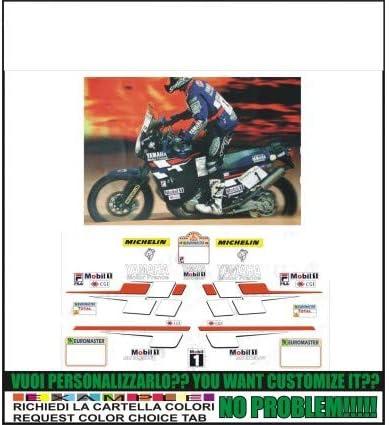 Emanuel & Co XT 750 Z Super Tenis Replica Peterhansel Paris Dakar 1998: Amazon.es: Coche y moto