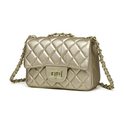 (JOLLQUE Women's Quilted Crossbody Bag,Purse with Chain (Champagne))