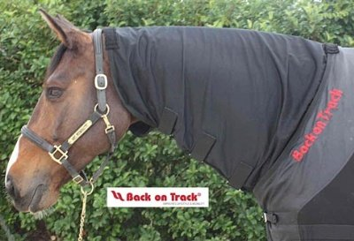 Image of Back on Track Therapeutic Black Mesh Neck Cover 81