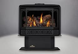 Napoleon GDS50-1NSB NG Painted Metallic Black Direct Vent Gas Stove
