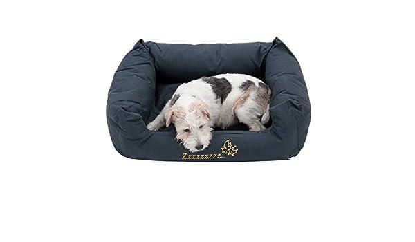 Sleepy Time - Cama para perro, color gris: Amazon.es ...