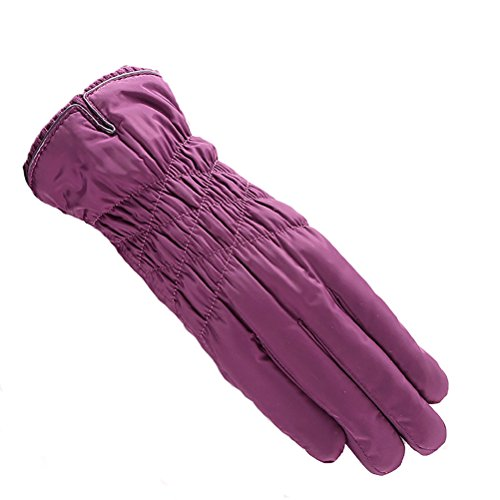 warm outdoor Zhhyltt Winter cold cotton touch ladies Purple feather plus screen driving gloves cashmere thick UFwZY5wq