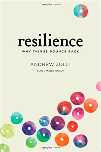 Amazon.it: Resilience: Why Things Bounce Back Andrew Zolli