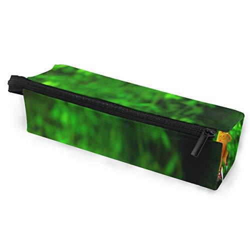 Glasses Case Aquarium Exotic Fish Multi-Function Zippered Pencil Box Makeup Cosmetic Bag for Women/Men ()