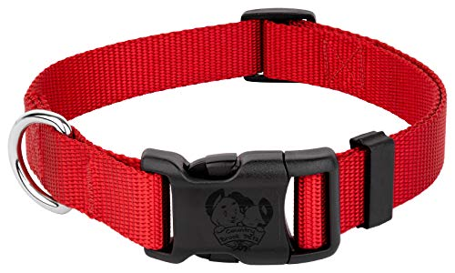 Country Brook Petz - 25+ Vibrant Colors - American Made Deluxe Nylon Dog Collar with Buckle (Extra Large, 1 Inch Wide, Bright Red)