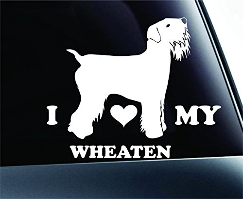 I Love My Wheaten Terrier Symbol Decal Paw Print Dog Puppy Pet Family Breed Love Car Truck Sticker Window (White) (Terrier Paw Prints)