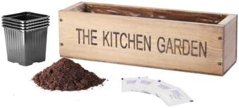 Macetero de cocina para especias: Amazon.es: Jardín