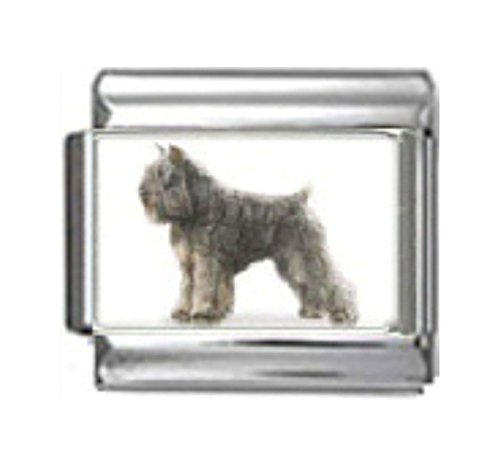 Stylysh Charms Bouvier DES Flandres Dog Photo Italian 9mm Link LinkDG096 ()