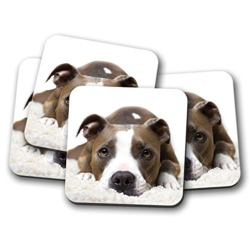4 Set - Pitbull Staffy Dog Coaster - Puppy Dogs Bull Terrier Cute Gift #15360