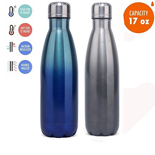 Picus Vacuum Insulated Double Wall Water Bottle,17 oz,Midnight Black