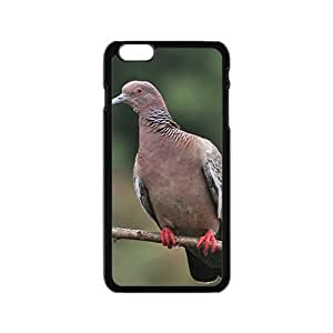 Blaick Pigeon Hight Quality Plastic Case for Iphone 6